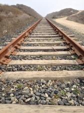 Train tracks by Shark Tooth Beach.