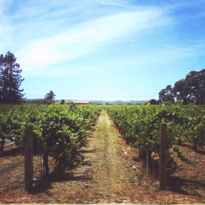 Five Ways to Make the Most of Wine Country