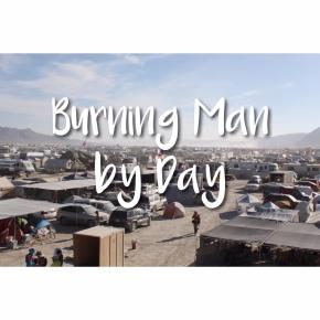 Photoset: Burning Man byDay